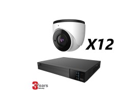 16 Channel, 12 IP 5MP Cameras, EyeOnet Kit, Eyeball