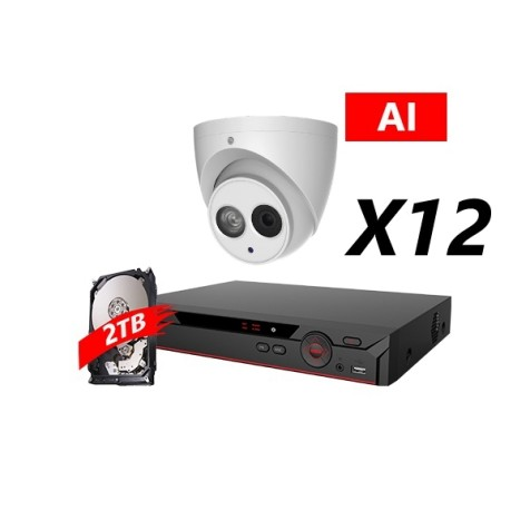 16 Channel, 12 HD 5MP AI Cameras, DH OEM Kit, White