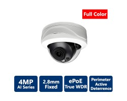 4MP Full Color White Light True WDR IP AI Vandal Dome, 2.8mm fixed lens