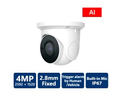 EyeOnet 4MP AI IP Built-in Mic Eyeball