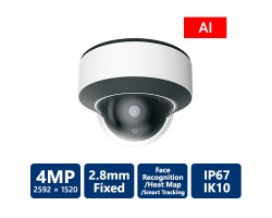 EyeOnet 4MP AI IP IR Vandal Dome